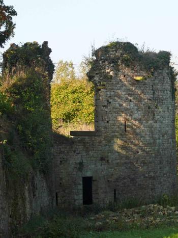 La Tour des Chiens, château du Bordage